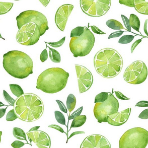 Watercolor Limes