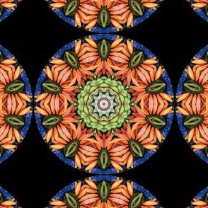 Daisy Face Mandala Fall Bloom