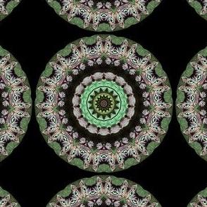 Cheshire Cat Mandala Olive
