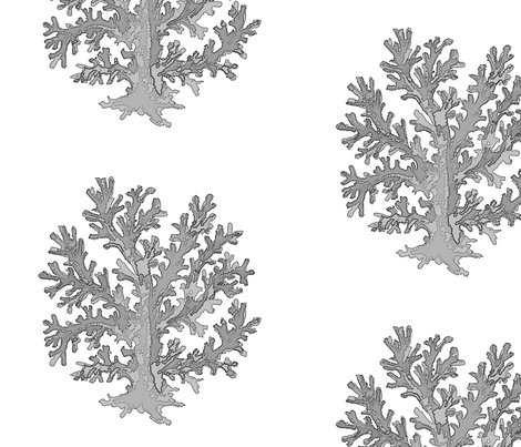 Rrsingle_coral_silver_shop_preview