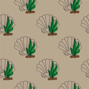 Ocean Fun Shells