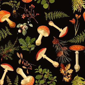 """12"""" Harvest and wildfin the forest - on black-Antique mushroom fabric,mushrooms fabric"""