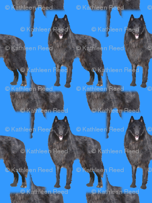 Rbelgian_sheepdog_array22done_preview