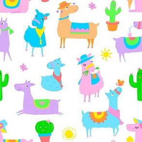 Summer Llamas