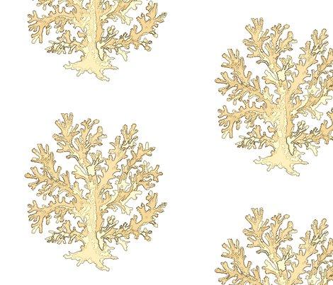 Rrsingle-coral-gold_shop_preview