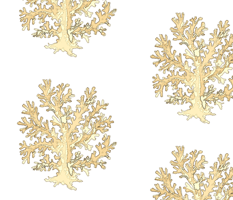Coral Gold fabric by alekszdesigns on Spoonflower - custom fabric