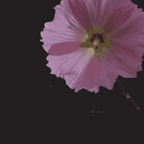 Pink on Black 1 inch flowers
