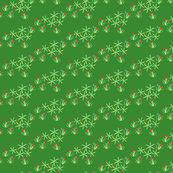 Succulents on a green background