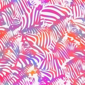 Sherbet Absract Zebra