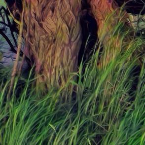 Willow wild