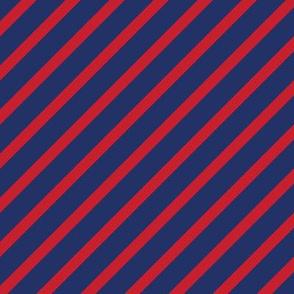 Phish Fishman Donut Diagonal Stripes Coordinate RETRO Colors
