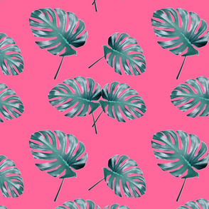 Monstera Leaves blue pink