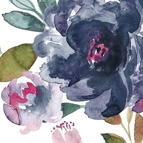 IBD midnight peonies C