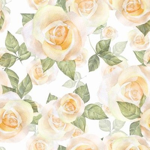 Yellow roses 8