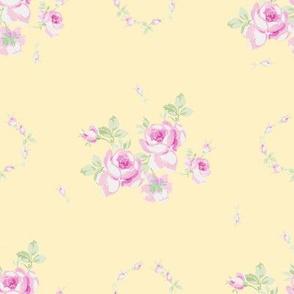 Lucia buttercup