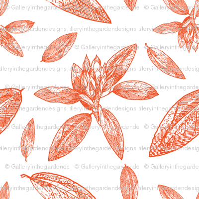 Large Scale Rhododendron Drawing for Ottomans, Chairs, Headboards