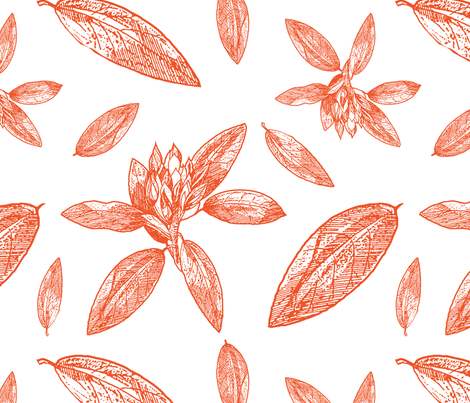 Large Scale Rhododendron Drawing for Ottomans, Chairs, Headboards fabric by galleryinthegardendesigns on Spoonflower - custom fabric
