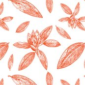 Rhodo_line_art_orange_large_scale_shop_thumb