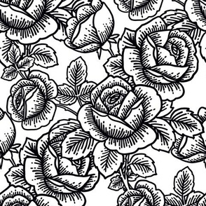 Vintage roses - black and white