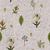 Rrfrench-linen-botanical_shop_thumb