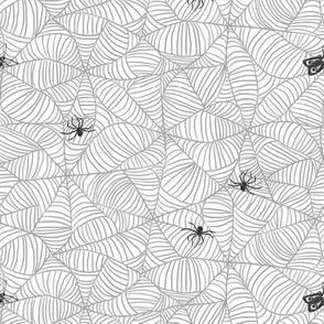 Web in Coal