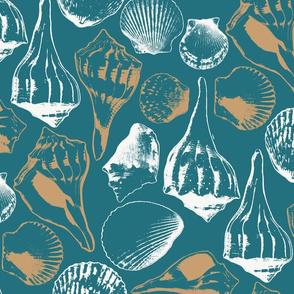 Marco Island Seashells Teal