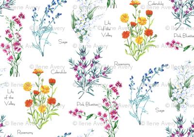 Herbal Floral