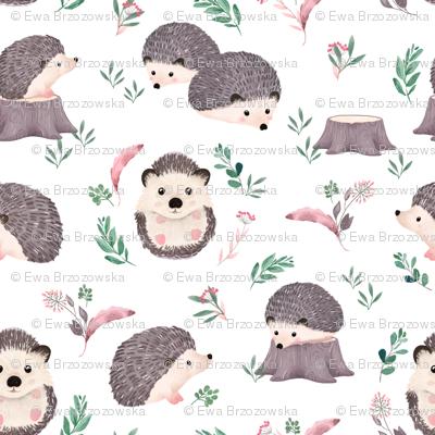 Watercolor Hedgehog