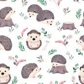 Rhedgehog1_shop_thumb