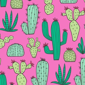 Cactus on Dark Pink