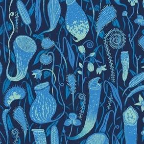 Fools Paradise [Blue]