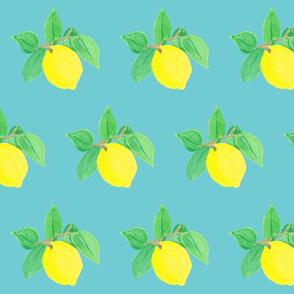 Little Lemon Lulu on turquoise-ch
