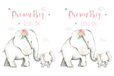 Rr27-x36-dream-big-little-one-pink-floral-elephant-2-to-1-yard-of-minky_shop_preview