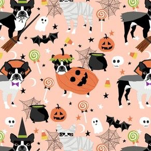 boston terrier halloween dog costume, halloween dog, dog breed, witch, pumpkin, candy, cute dog - peach