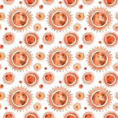 Many many suns
