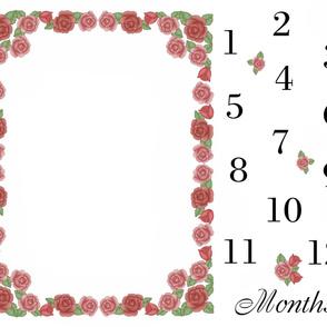 Red Rose Baby Girl Milestone Month Blanket