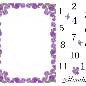 Purple Rose Baby Girl Milestone Month Blanket
