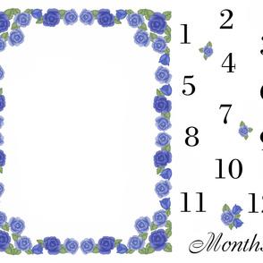 Blue Rose Baby Girl Milestone Month Blanket