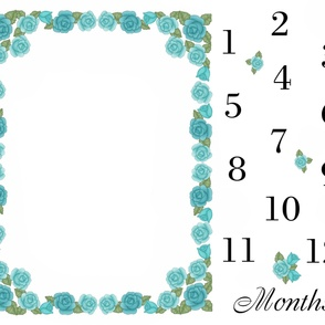 Aqua Teal Rose Baby Girl Milestone Month Blanket