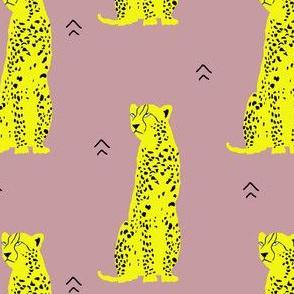 Cheetah Groove