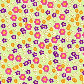 60s daisies mint background