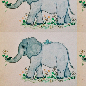Elephant baby with color