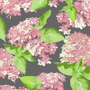 pink hydrangeas on dark gray