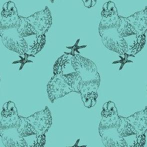 Chicken Illustration on Blue