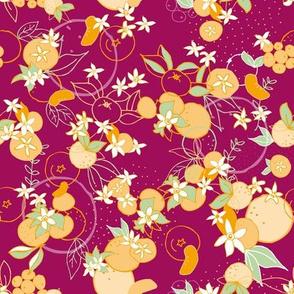 Mediterranean Mandarines Purpur