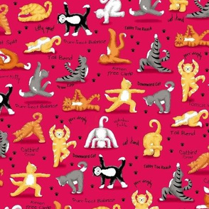 Kitty Cat Yoga  Red Small