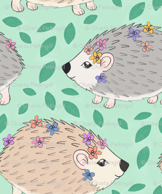 Forest Fete Hedgehogs