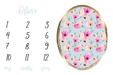 Shades of Pink Roses Milestone Blanket fabric by hipkiddesigns on Spoonflower - custom fabric
