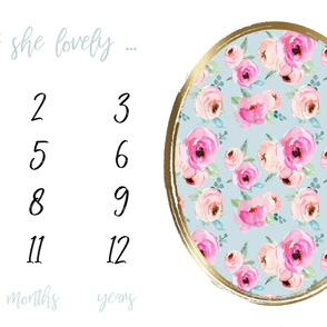 Isn't She Lovely // Shades of Pink Roses Milestone Blanket