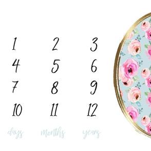 "54"" Shades of Pink Roses Milestone Blanket"